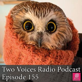 Bake Off round up. Rocky the owl. Isle of Wight hovercraft. 2021 food trends. EP 155