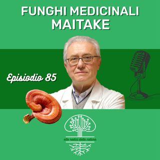 Funghi Medicinali: MAITAKE