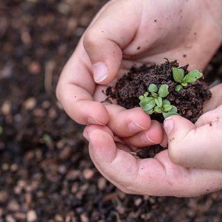 ¿La educación ambiental como objetivo suficiente? | el charco #11