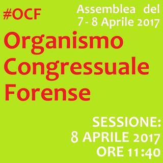 Assemblea #OCF Sessione SABATO 8 APR. - Organismo Congressuale Forense, 7-8 Aprile 2017