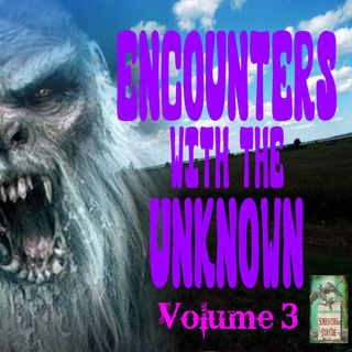 Encounters with the Unknown | Volume 3 | Podcast E169