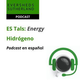Energy Talks - Smart Grid y Almacenamiento - 22.07.2021