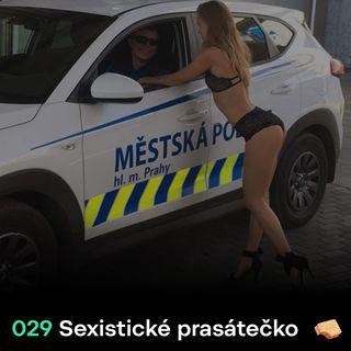 SNACK 029 Sexisticke prasatecko