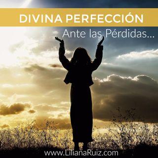 """""""Divina Perfección Ante Las Pérdidas"""""""