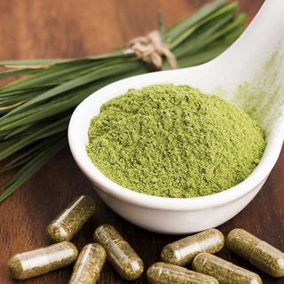 The Ultimate Guide to Growing Kratom