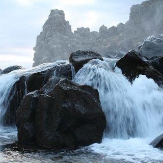 Buongiorno 😃☀️💖 stamattina radichiamo nel Distacco in connessione alle rocce