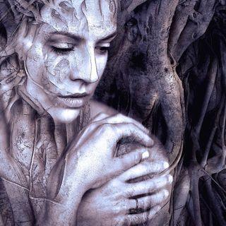 Mi raíz