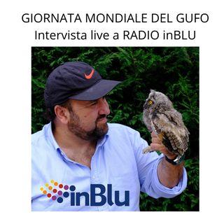 GIORNATA MONDIALE DEL GUFO INTERVISTA A MARCO MASTRORILLI RADIO INBLU