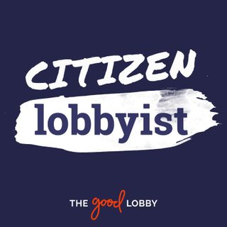 Citizen Lobbyist