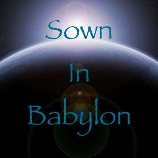 Sown in Babylon