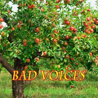 Bad Voices, Genesis 3:4-6