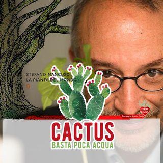 Cactus #15 - Il respiro della Terra - 07/01/2021