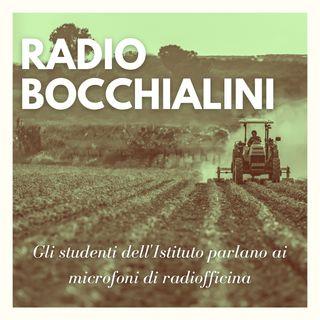 Radio Bocchialini