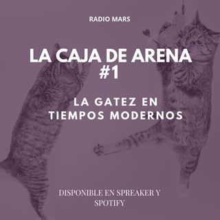 La Caja de Arena - La Gatez en tiempos Modernos