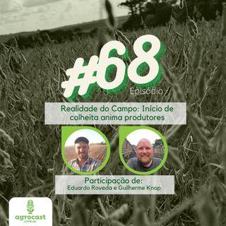 Realidade do Campo: Início de colheita anima produtores