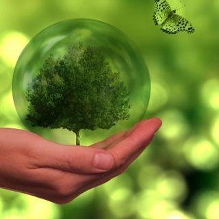 Los Principios de los Bonos Verdes