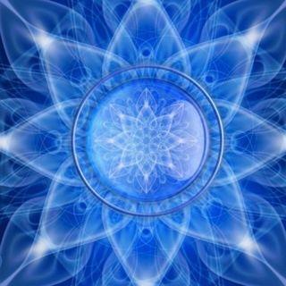 Buongiorno nel fiore della trasformazione, oggi leggiamo insieme la Guida al Nuovo Paradigma!