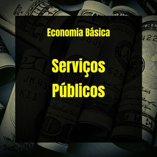 Economia Básica - Serviços Públicos - 13