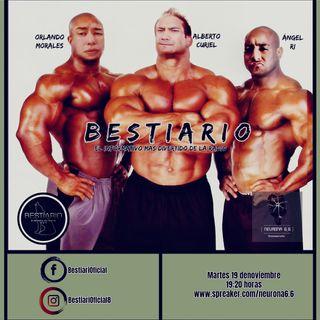 Bestiario VI