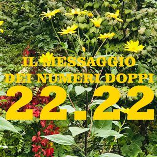 PATRIZIA PEZZAROSSA - IL MESSAGGIO DEI NUMERI DOPPI (11.11 - 22-22 ecc.)