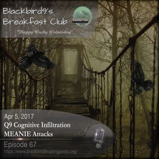 Q9 Cognitive Infiltration MEANIE Attacks - Blackbird9 Podcast