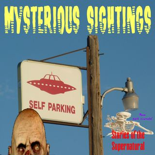 Mysterious Sightings | Interview with Al Santariga | Podcast
