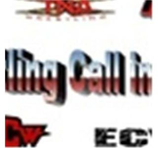 The Wrestling Call In Show