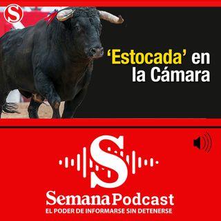 Cámara de Representantes aprobó prohibición de las corridas de toros en Colombia
