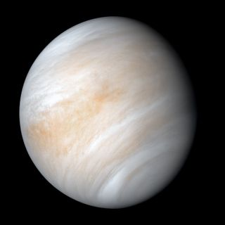 Cosmic Queries – Life on Venus