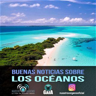 NUESTRO OXÍGENO Buenas noticias sobre los océanos - Quim. Luis Manuel Guerra