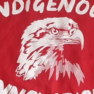 TCL John Su - Indigenous Innovations