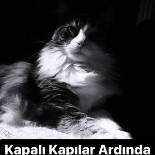 Kalemler-Yaşar Kemal