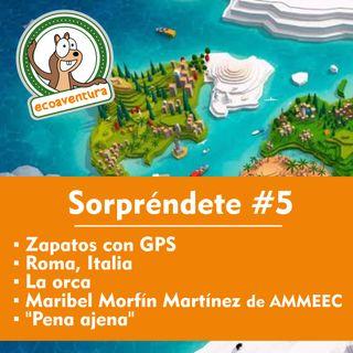 """T14 #5 zapatos con GPS, Roma Italia, La orca, Maribel Morfín Martínez de AMMEEC y """"Pena ajena"""""""