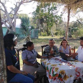 La Ruta Del Manatí T1 Ep17.- Edicción Especial con la gente de la comunidad de Nacaste del Sistema Lagunar de Alvarado.