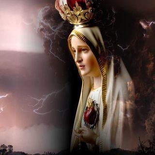 Fatima Today VI