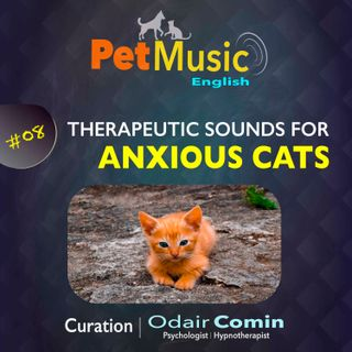 #08 Therapeutic Sounds for Anxious Cats | PetMusic