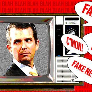 Cold War Radio - CWR#483 The 'Mainstream Media' No Longer Is Really Mainstream