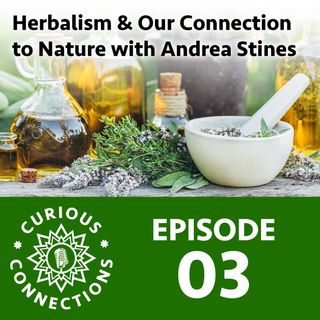 Herbalism and Our Connection to Nature with Andrea Stines