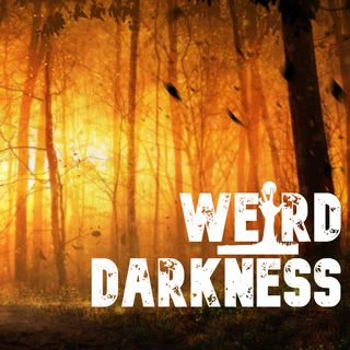 """""""THE NEVERGLADES MYSTERIES: REMEMBER ME"""" by David Farrow #WeirdDarkness"""