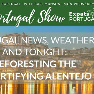 Reforesting the desertifying Alentejo - Ward Demaere on The Portugal Show