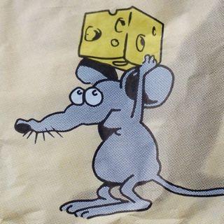 ASP.NET 5: formaggio per topolini - Dino Esposito