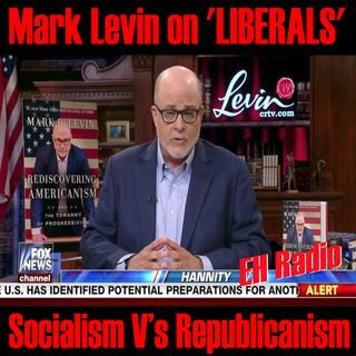 Morning moment Mark Levin on 'LIBERALS' July 20 2017