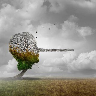 Sostenibilità, comunicazione e greenwashing