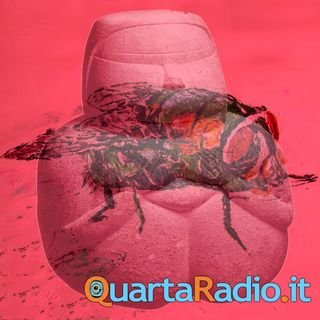 Solo una mosca. Un racconto di Gianfranco Cambosu