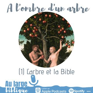 #172 A l'ombre d'un arbre (1) L'arbre et la Bible