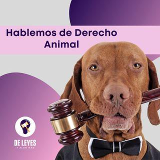 T2E03. Hablemos de Derecho Animal