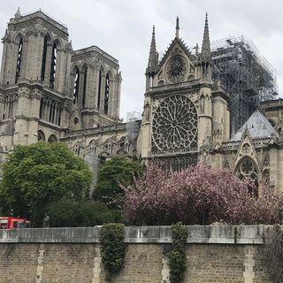 Estructura de Catedral de Notre Dame podría perderse