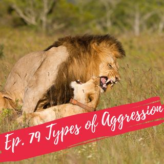 Ep. 79 Types of Aggression