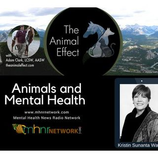 Animals and Mental Health on Mental Health News Radio Network