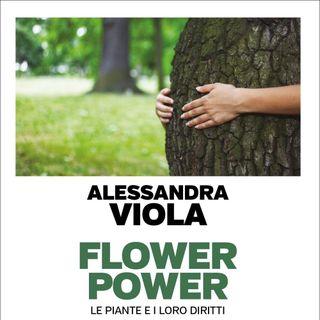 "Alessandra Viola ""Flower Power"""